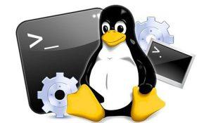 Lệnh cơ bản trên Linux - Phần 3